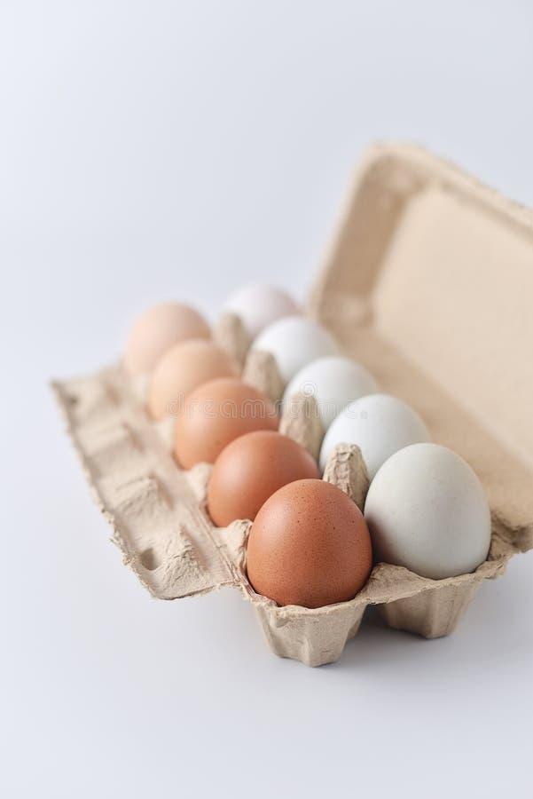 Fega ägg och andägg på vit bakgrund arkivbilder