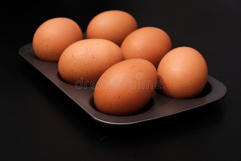 Fega ägg på magasinet fotografering för bildbyråer