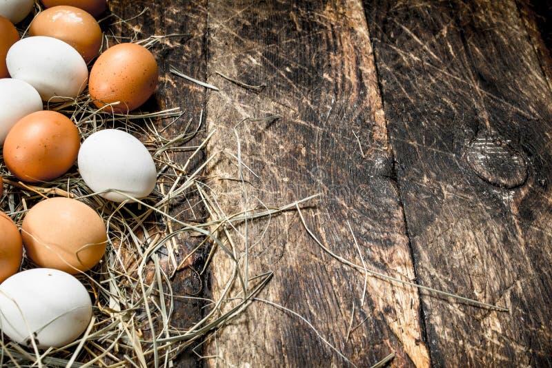 Fega ägg på sugröret arkivfoton