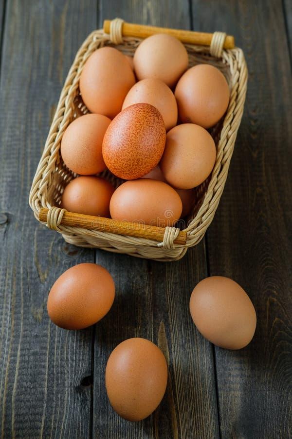 Fega ägg på träbakgrund royaltyfri fotografi