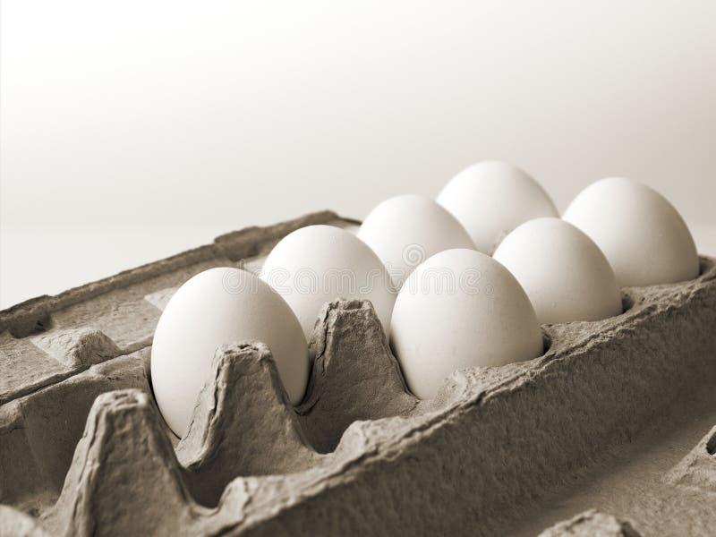 7 fega ägg som är nya i en papppacke som göras av återanvänt förlorat papper arkivbilder
