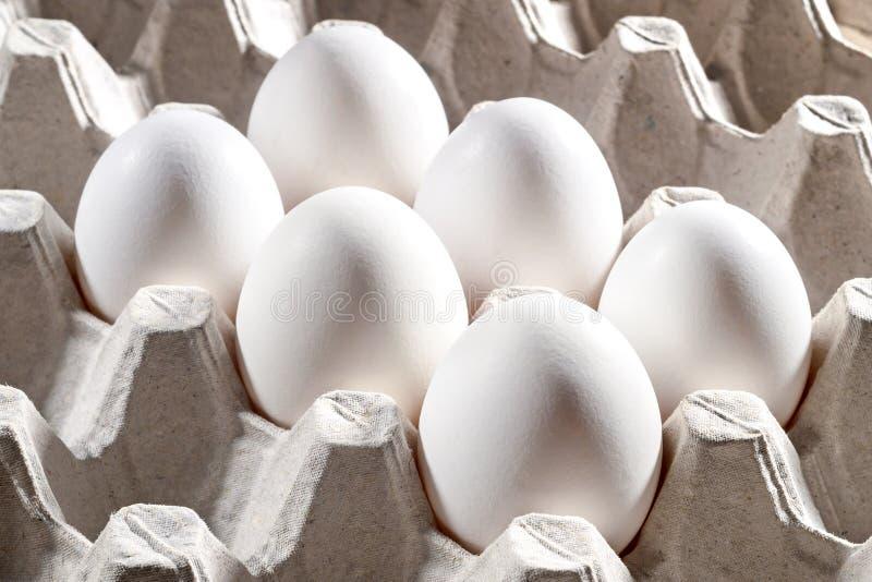 Fega vita ägg i en kassett arkivfoto