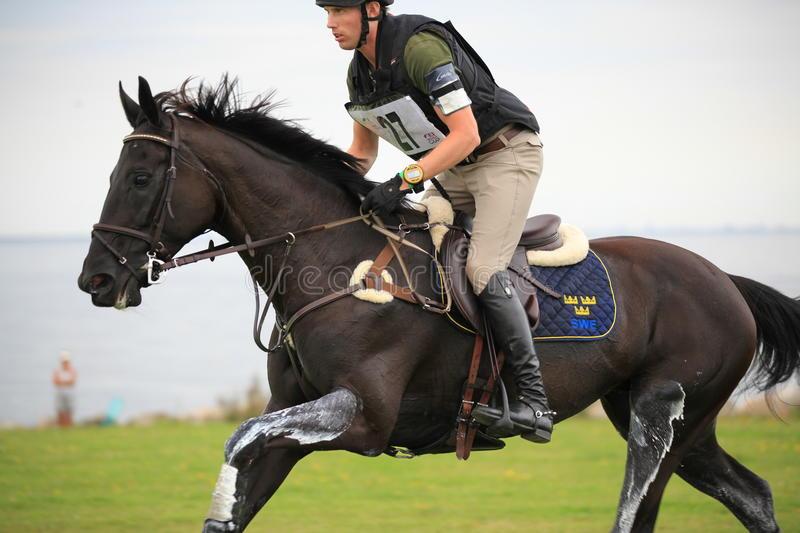 """FEI World Cupâ""""¢ Eventing Qualifier 2011, Sweden. royalty free stock images"""