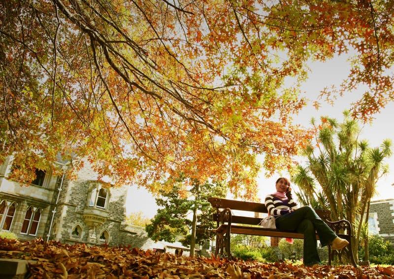 Feiertag im Herbst lizenzfreie stockfotos