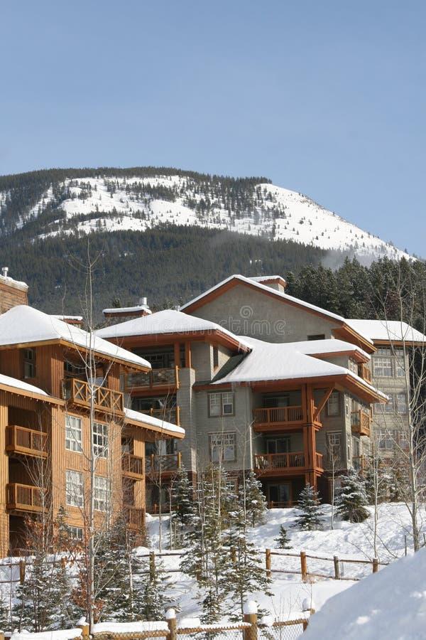 Feiertage in den kanadischen Bergen stockbilder