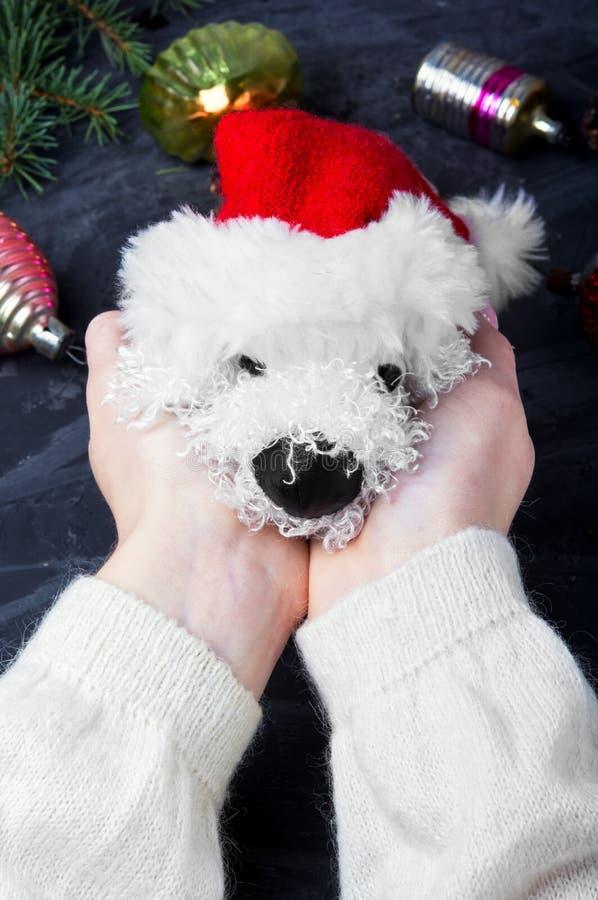 Feiertags-symbolischer Weihnachtshund lizenzfreie stockfotos