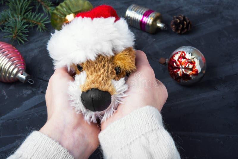 Feiertags-symbolischer Weihnachtshund lizenzfreies stockbild