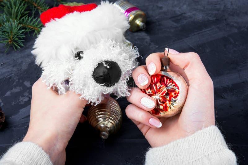 Feiertags-symbolischer Weihnachtshund stockfotografie