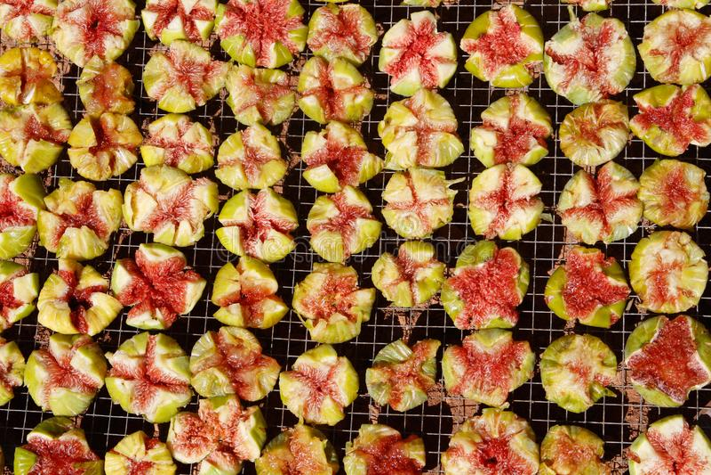 Feige trägt Früchte, trocknend zur Sonne lizenzfreie stockfotografie