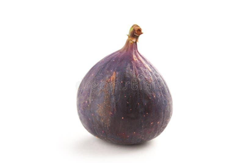Feigefrucht auf weißem Hintergrund stockbild