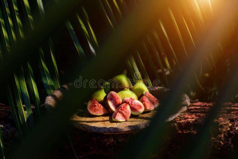 Feigen unter den Blättern Kreative Fotografie der tropischen Frucht in der schönen Verarbeitung stockbild