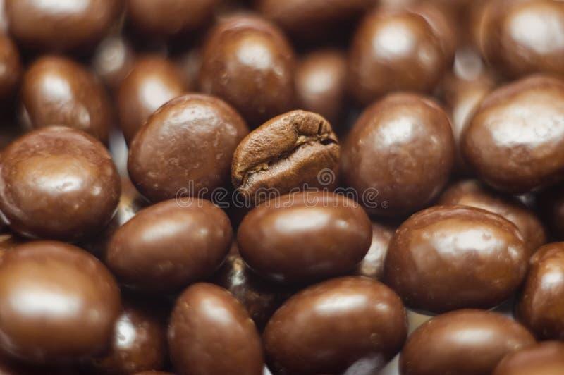 Feijão de café fotos de stock