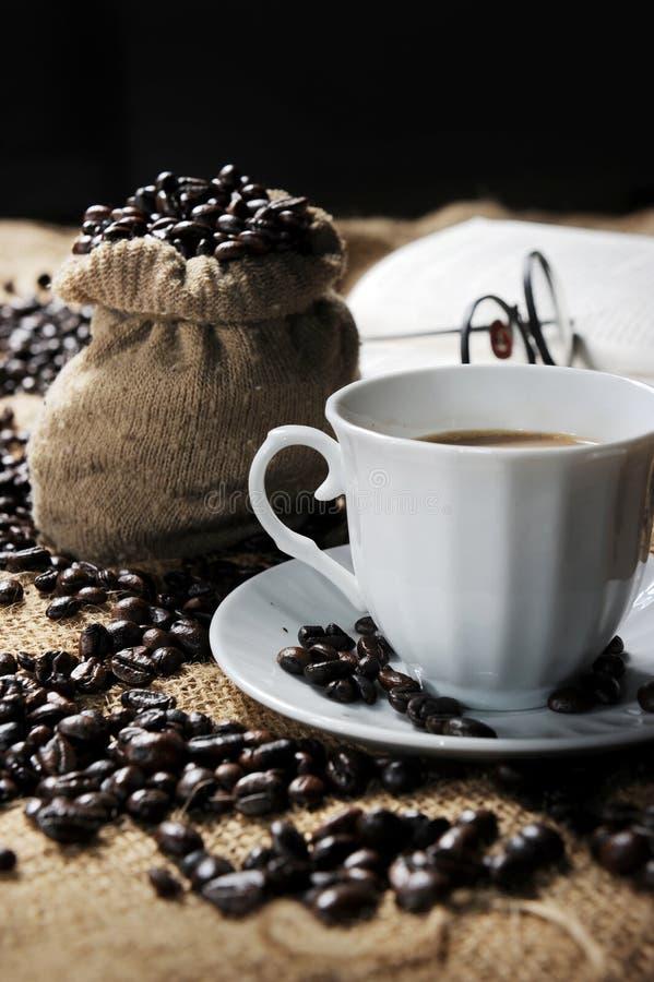 Feijão de café foto de stock