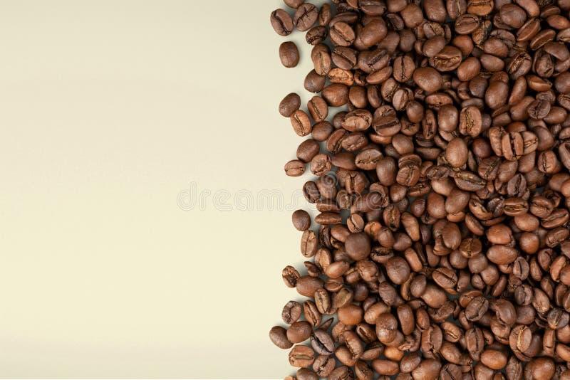 Feijão de café foto de stock royalty free