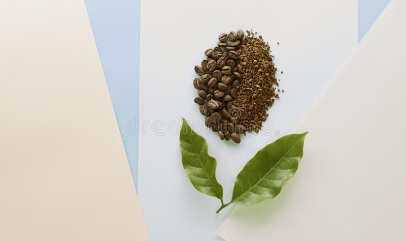Feijão de café e café granulado com folha do café ilustração stock
