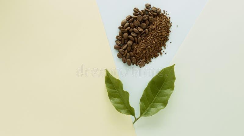 Feijão de café e café granulado com folha do café ilustração do vetor