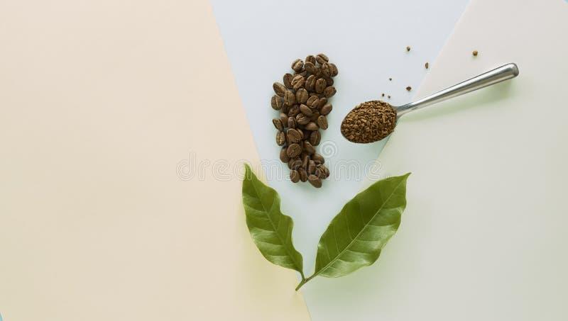 Feijão de café e café granulado com folha do café ilustração royalty free