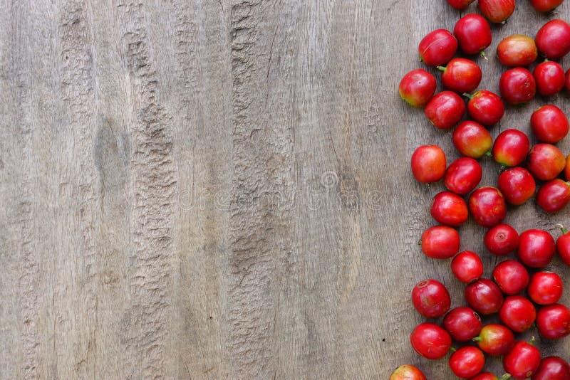 Feijão de café fresco fotos de stock