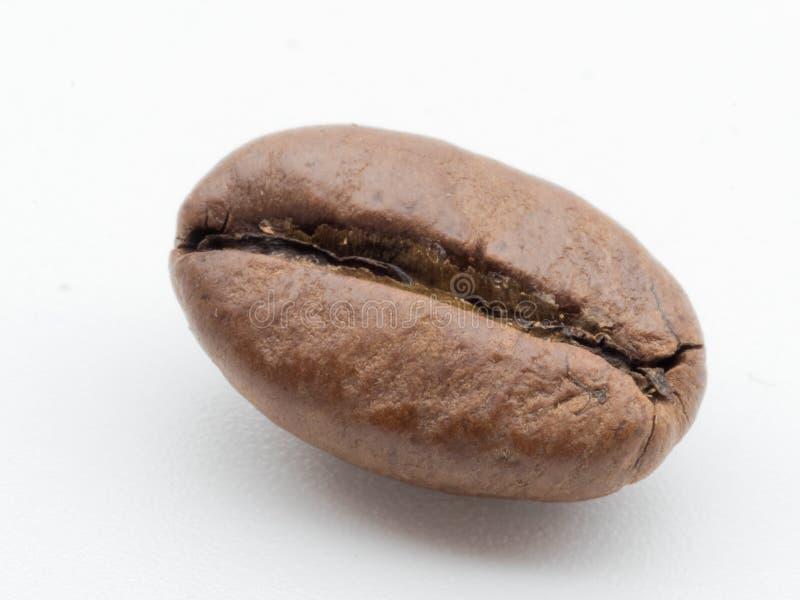 Feijão de café isolado fotos de stock royalty free
