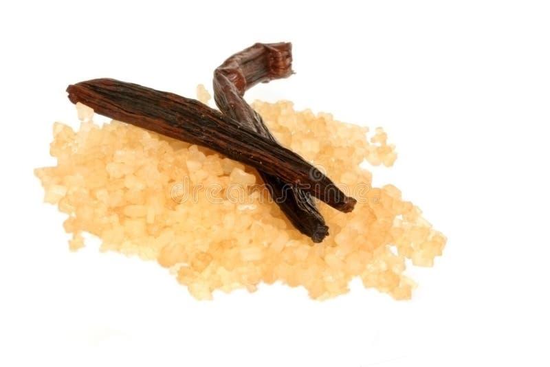Feijão e açúcar da baunilha foto de stock