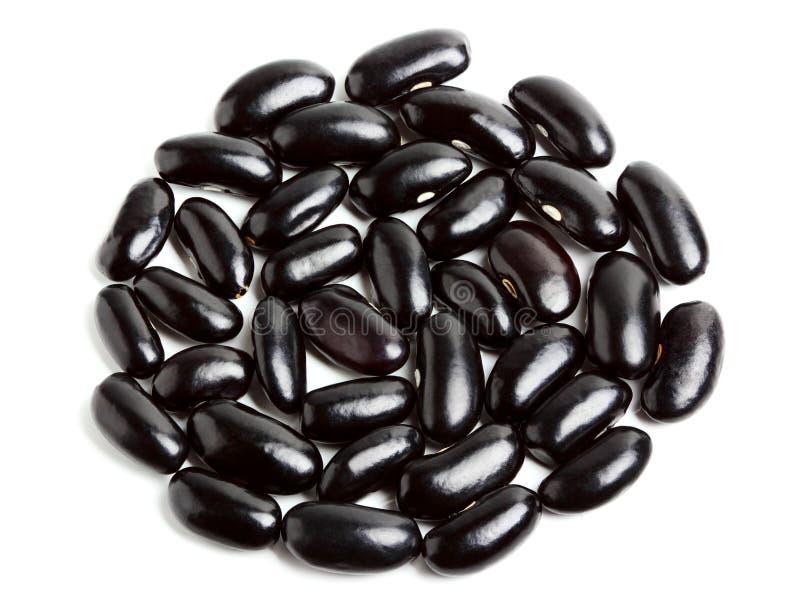 Feijão preto do haricot na forma do círculo. imagem de stock royalty free