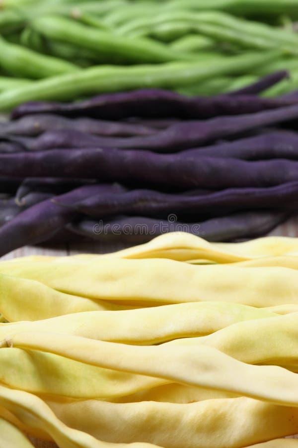 Feijões amarelos, verdes e violetas crus imagem de stock royalty free