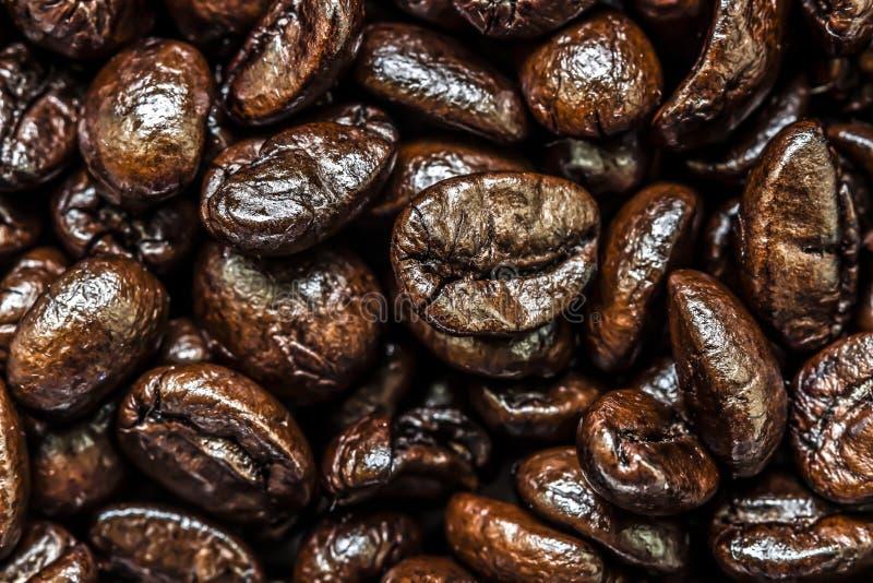 Feijões de café Antes de moer fotos de stock