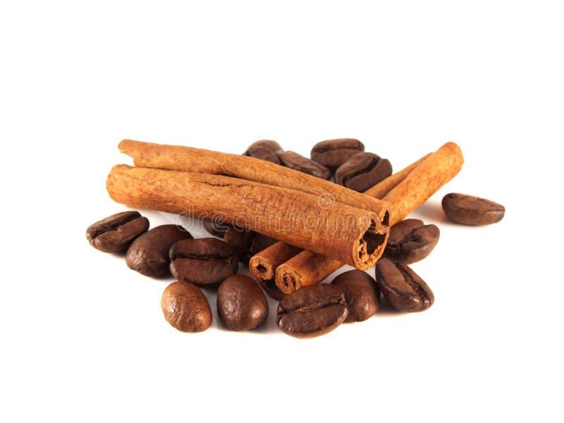 Feijões de café com as vagens da canela no branco fotografia de stock