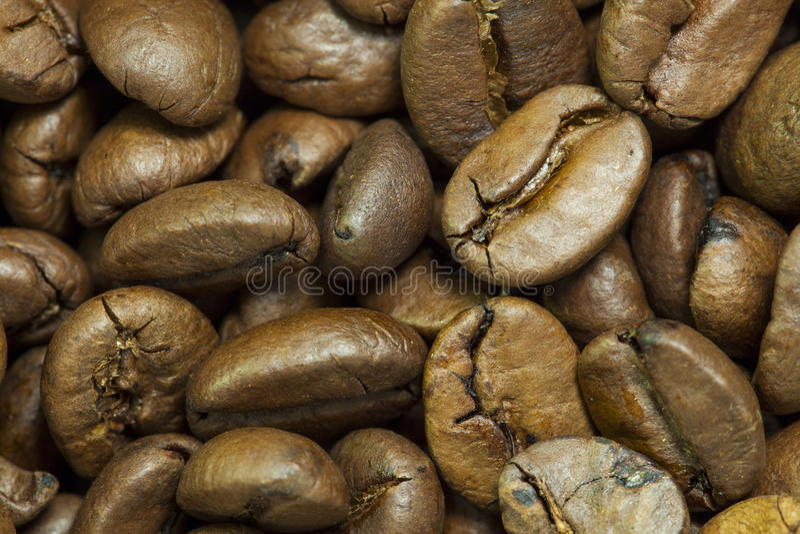 Feijões de café crus foto de stock royalty free