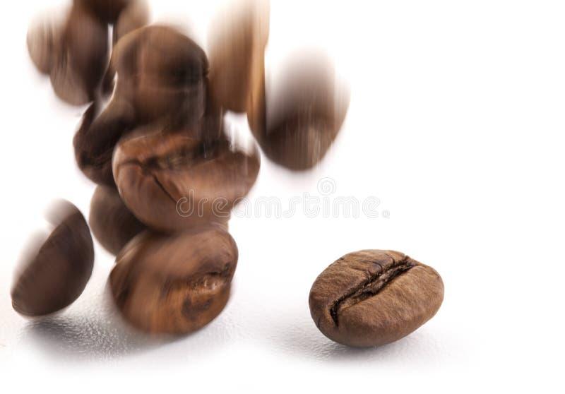 Feijões de café do vôo imagem de stock