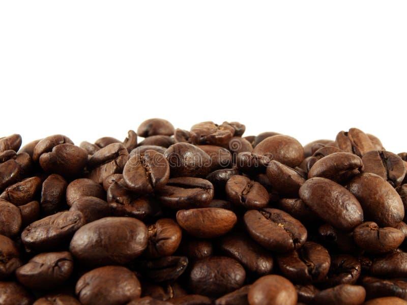 Feijões de café em um fundo branco. Isolado. fotografia de stock