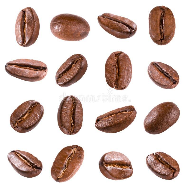 Feijões de café isolados no branco fotografia de stock