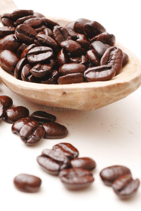 Feijões de café na colher de madeira   fotografia de stock