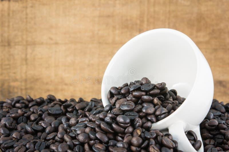Feijões de café no copo branco imagem de stock royalty free