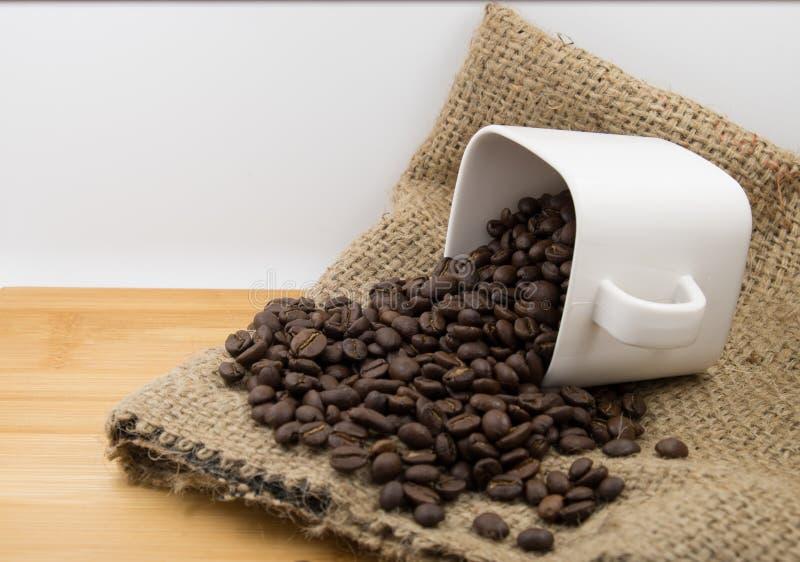 Feijões de café no copo de café imagem de stock