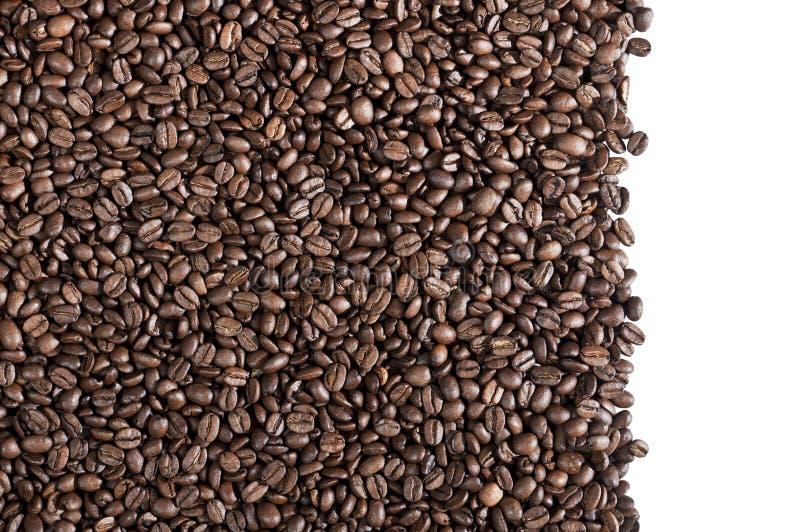 Feijões de café no fundo branco foto de stock royalty free