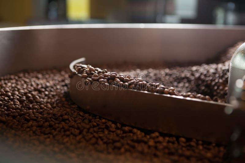Feijões de café recentemente roasted - close up imagem de stock