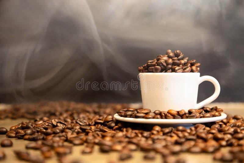 Feijões de café Roasted em um copo do café quente, feijões de café da goma-arábica e feijões de café robusta misturados, meio roa imagens de stock royalty free