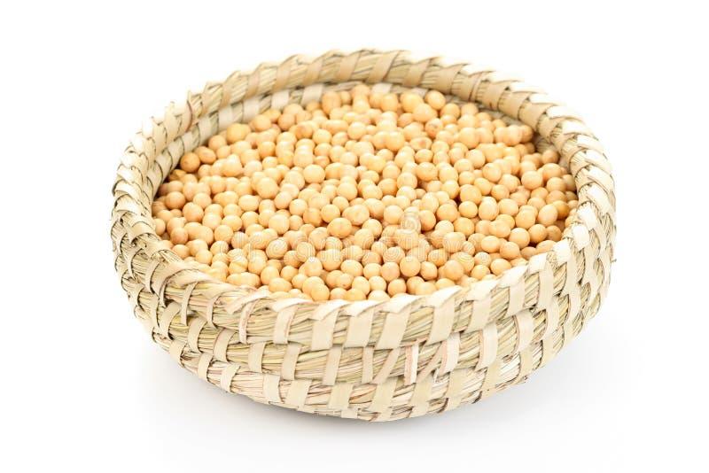 Feijões de soja imagens de stock royalty free