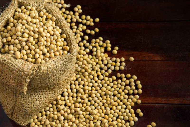 Feijões de soja em sacos do saco imagens de stock royalty free