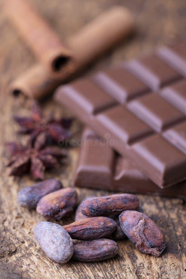 Feijões e chocolate do cacau fotos de stock royalty free