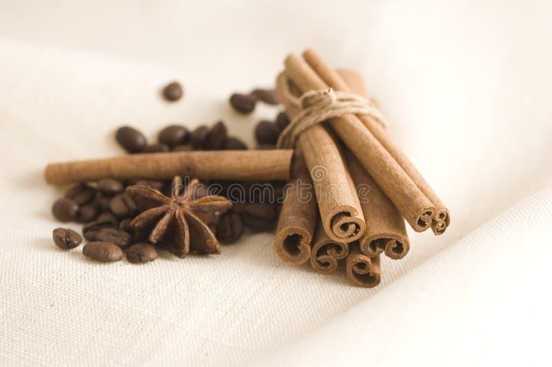 Feijões e especiarias de café imagens de stock