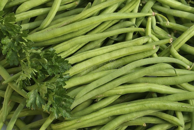Feijões franceses verdes com salsa imagem de stock royalty free