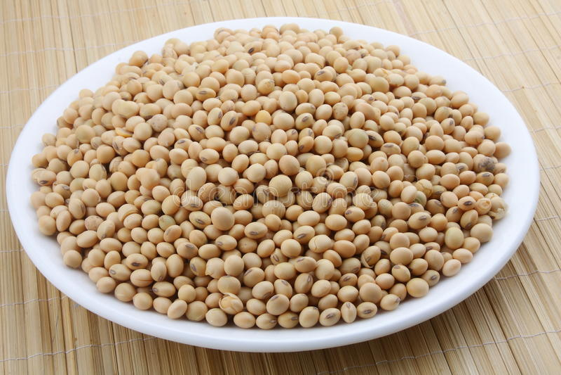 Feijões orgânicos da soja. imagem de stock