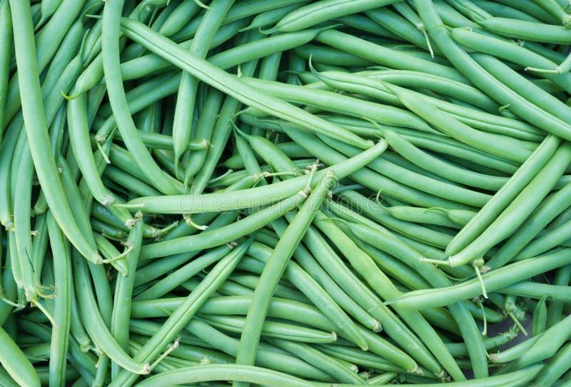 Feijões verdes fotografia de stock royalty free