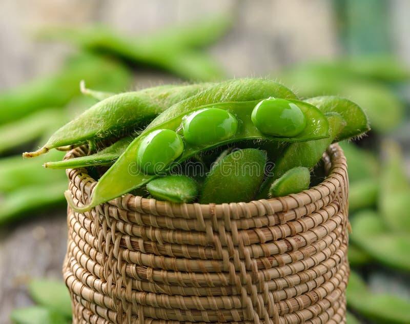 Feijões verdes da soja na cesta foto de stock