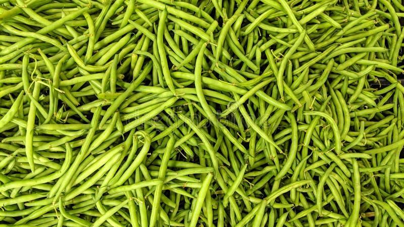 Feijões verdes em fraco ilustração stock