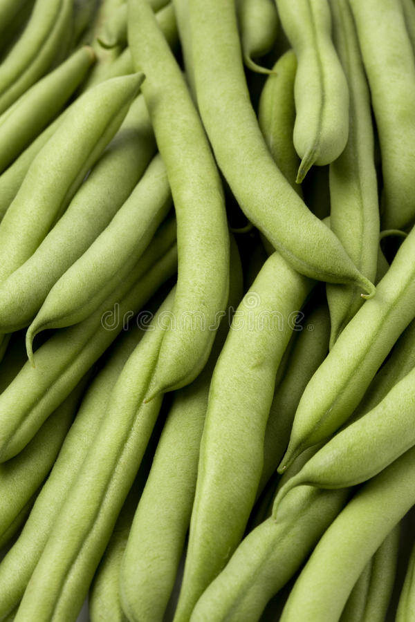 Feijões verdes ou feijões franceses imagem de stock