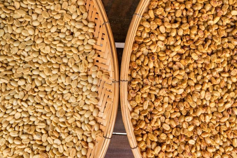 Feij?es de caf? que secam no sol fotografia de stock royalty free