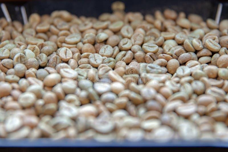 Feij?es de caf? Roasted apronte fazendo as bebidas de alta qualidade como o café, o latte ou o cappuccino imagem de stock royalty free